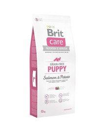 Care Grain-Free Puppy salmon & potato 1 kg