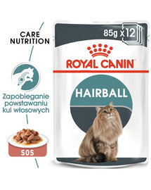 Hairball Care 85 g x 12