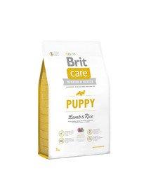Care Puppy lamb & rice 3 kg