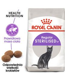Sterilised 37 4 kg karma sucha dla kotów dorosłych, sterylizowanych