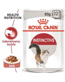 Instinctive 12x85 g w sosie karma mokra w sosie dla kotów dorosłych, wybrednych