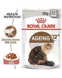 AGEING +12 85 g w sosie