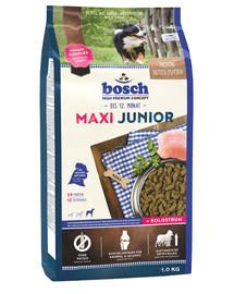 Maxi Junior 1 kg
