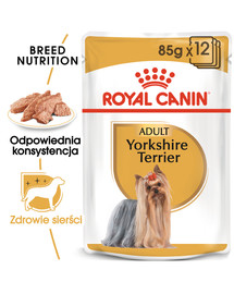 Breed Mini Yorkshire 12 x 85 g