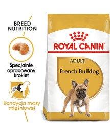 French Bulldog adult 9 kg