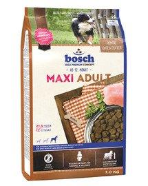 Maxi adult 3 kg