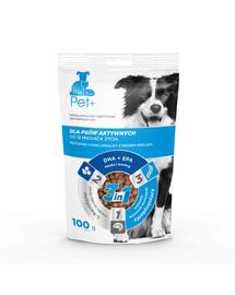 Dog active treat 100 g