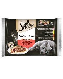 Selection in Sauce mięsne dania 4 x 85 g x13