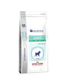 Pediatric Junior Small Dog 4 kg
