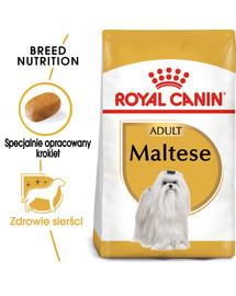 Maltese adult 1.5 kg karma sucha dla psów dorosłych rasy maltańczyk