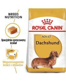 Dachshund karma sucha dla psów dorosłych rasy jamnik  1.5 kg