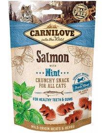 Crunchy snacks chrupiące przysmaki z łososiem i miętą 50 g