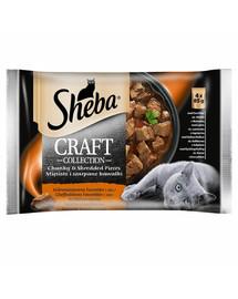 saszetka 13*4x85g Craft Collection Soczyste Smaki - mokra karma dla kotów w sosie (z wołowiną, z jagnięciną, z indykiem, z kurczakiem)