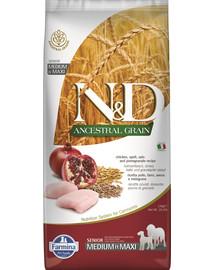 N&D Low Grain Chicken & Pomegranate Senior Medium & Maxi 12 kg