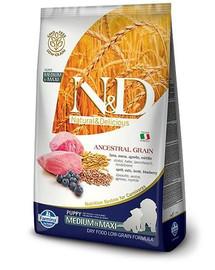 N&D Low Grain Dog Lamb & Blueberry Puppy Medium & Maxi 12 kg