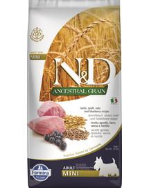 N&D Low Grain lamb & blueberry adult mini dog 7 kg