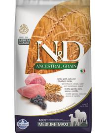 N&D Ancestral grain dog adult Medium&Maxi lamb, spelt, oats, blue 2,5 kg