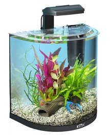 AquaArt Explorer Line 30 l Goldfish