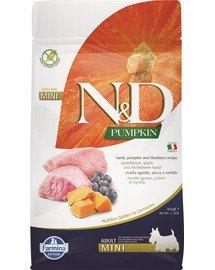 N&D Pumpkin lamb&blueberry adult mini 800 g