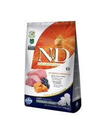 N&D GF Pumpkin Lamb & Blueberry Puppy Medium & Maxi 12 kg