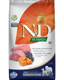 N&D Pumpkin lamb&blueberry adult medium/maxi 12 kg