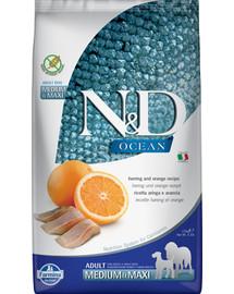 N&D Ocean dog adult herring & orange medium & maxi 2,5 kg