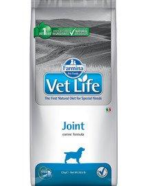 Vet Life Dog Joint 12 kg
