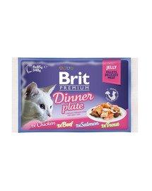 Premium Cat pouch jelly fillet Dinner plate Saszetki w galaretce dla kotów, mix smaków 340 g (4x85 g)