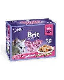 Premium Cat pouch jelly fillet Dinner plate Saszetki w galaretce dla kotów, mix smaków 1,2 kg (12x85 g)