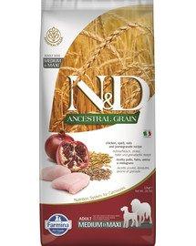 N&D Ancestral Grain dog Adult Medium & Maxi Chicken & pomegranate 12 kg