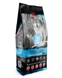 Pełnoporcjowa sucha karma dla psów Wild Fish 12 kg