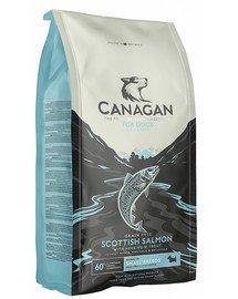 Dog Small Breed Scottish Salmon 6 kg sucha karma dla psów ras małych szkocki łosoś