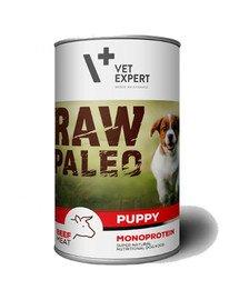 RAW PALEO Puppy beef 400 g mokra karma dla szczeniąt wołowina
