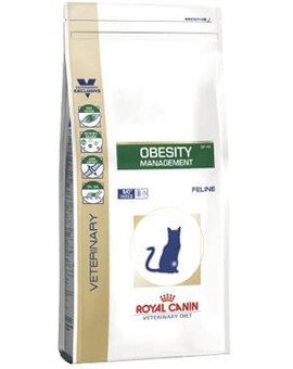 Cat obesity 6 kg