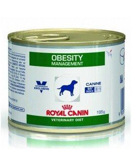 Obesity 195 g