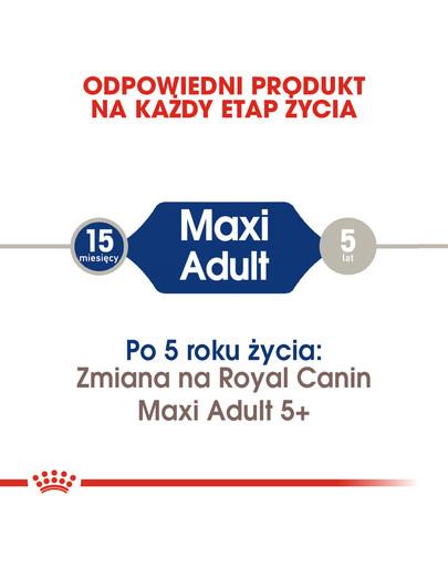 Maxi Adult tabela dawkowania