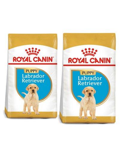 ROYAL CANIN Labrador Retriever Puppy Junior karma sucha dla szczeniąt do 15 miesiąca, rasy labrador retriever 24 kg (2 x 12 kg)