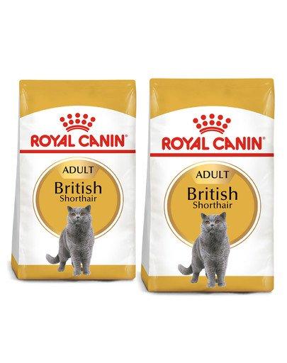 ROYAL CANIN British Shorthair karma sucha dla kotów dorosłych rasy brytyjski krótkowłosy 20 kg (2 x 10 kg)