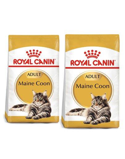 ROYAL CANIN Maine Coon Adult karma sucha dla kotów dorosłych rasy maine coon 20 kg (2 x 10 kg)