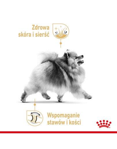 Pomeranian Adult 12x85g karma mokra, pasztet dla psów dorosłych rasy szpic miniaturowy