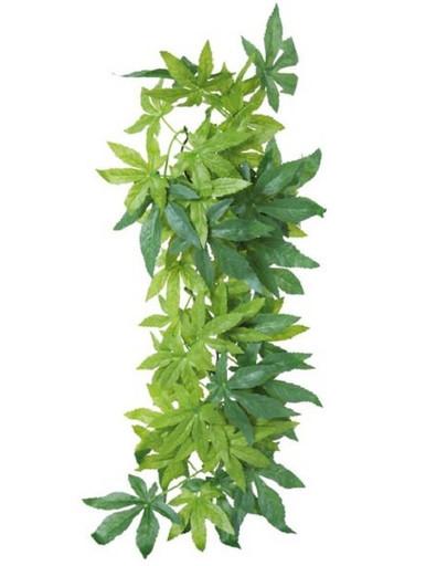 Roślina Wisząca Z Jedwabiu o 20 x 30 cm