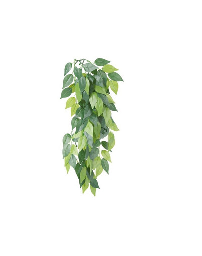 Roślina wiszaca z jedwabiu o 20 x 30 cm