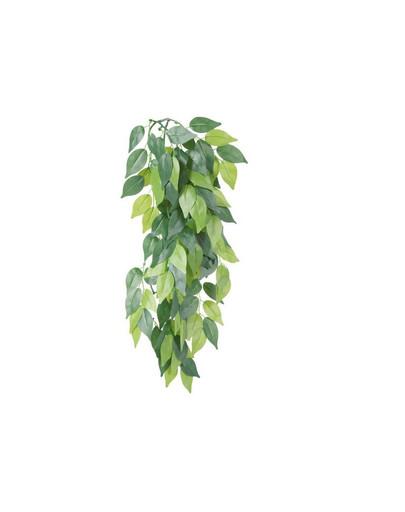 Roślina wiszaca z jedwabiu 20 x 50 cm