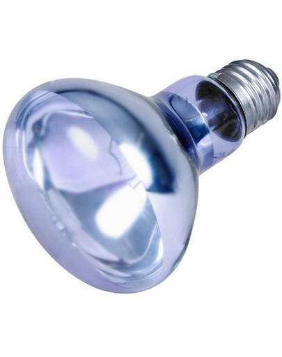 Punktowa lampa grzewcza neodymowa 75 W