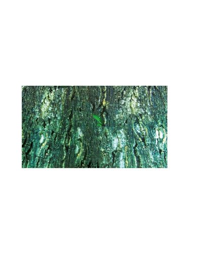 Tło do terrarium dwustronne tropic / bark