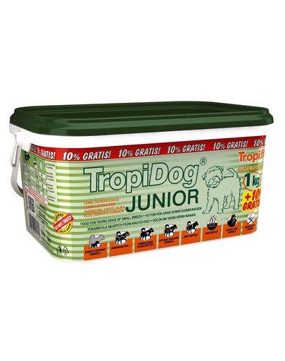 Super Premium Junior S Lamb, Salmon & Eggs 3l/1,1kg sucha karma dla szczeniąt małych ras Jagnięcina, łosoś i jajka