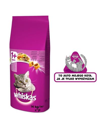 WHISKAS Adult 14kg - sucha karma dla kota z jagnięciną + naklejka GRATIS