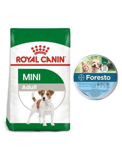 ROYAL CANIN Mini Adult 2 kg karma sucha dla psów dorosłych, ras małych + BAYER FORESTO Obroża dla kota i psa przeciw kleszczom i pchłom poniżej 8 kg
