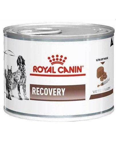Vet dog/cat recovery 195 g