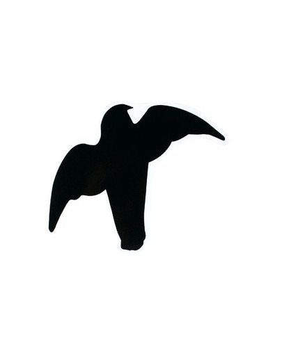 Zestaw naklejek  ptaki drapieżne 3 szt